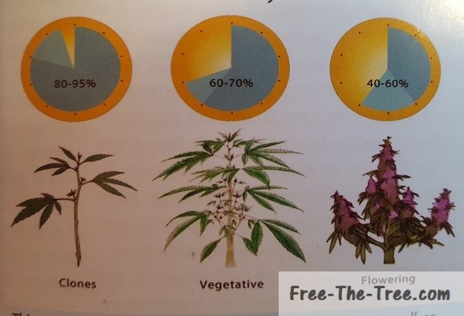 Diagram showing the relative humidity at each stage of Marijuana's life