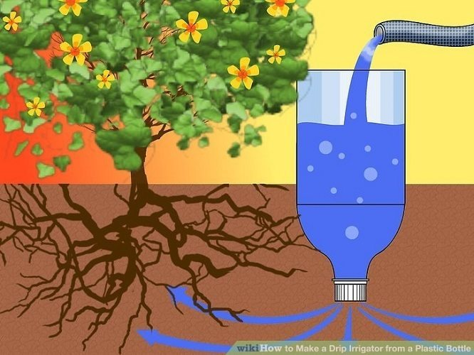 Watering plants with slow drip irrigation system