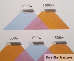 Two 1000w bulbs vs 3 600 watt HID light bulbs