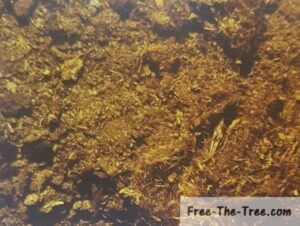 peat made of decomposed coconut