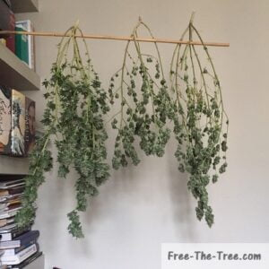 home made marijuana drying
