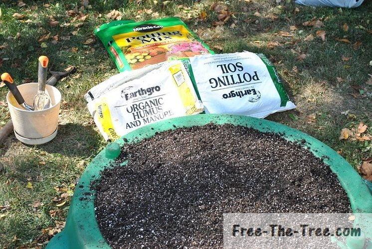 Organic potting soil full of nutrients, perfect for growing marijuana