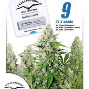 High Potency Mix Autoflowering Seeds - seedsman-by-dutch-passion - 9