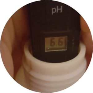 pH meter showing a pH of 6.6