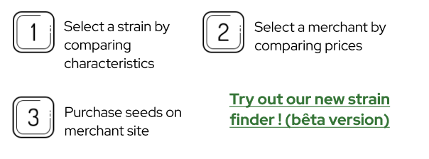 explains how to use the tool in three easy steps : 1. Select a strain by comparing characteristics 2. Select a merchant by comparing prices 3. Purchase seeds on merchant site