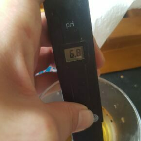 pH level at 6.8 on first watering