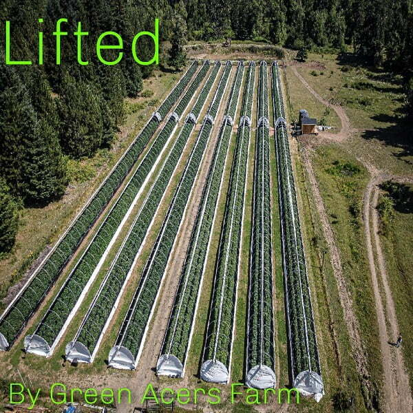 Lifted's cannabis farm viewed from the sky