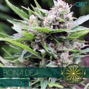 thumbnail Bona Dea CDB+ Feminized Seeds